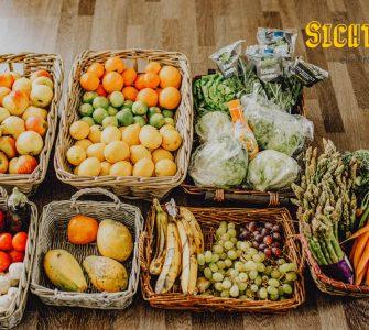SichtWeisen | Foodsharing | Foto von Stefanie Lehnes by foodsharing e.V.